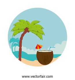 coconut cocktail summer icon