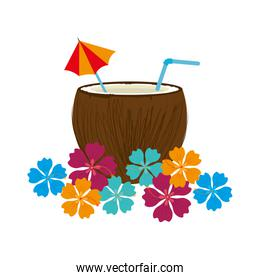 coconut cocktail summer isolated icon