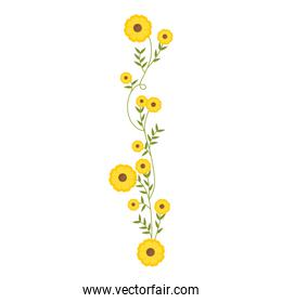 creeper with yellow flowers floral design