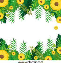 frame with yellow flowers and green leaves nature design