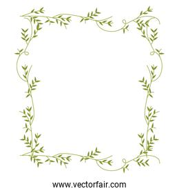 frame with green creepers nature design