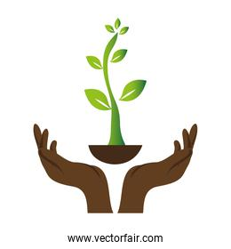 green background with hands and plant
