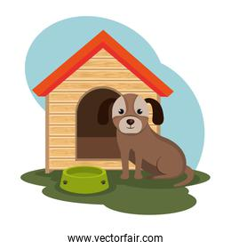 cute doggy pet icon