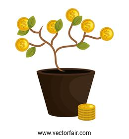 tree plant with coins