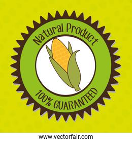 natural product food vegetable