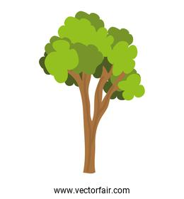 green tree with trunk,vector graphic