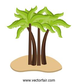 sand with beach palms,vector graphic