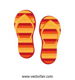 colorful beach sandals,vector graphic
