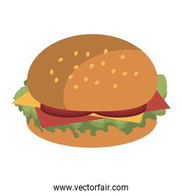 fast food burger, vector graphic
