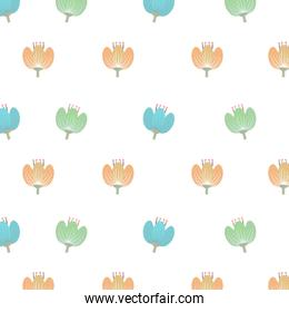 colorful flowers and isolated background, vector graphic
