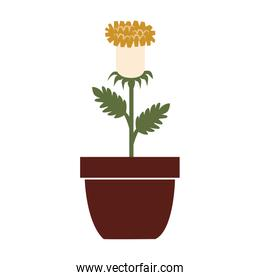 Flower vase colorful icon vector illustration