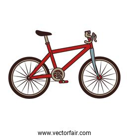 Bike transport vehicle icon vector illustration