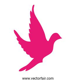 dove bird silhouette icon