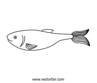 fish sea wildlife food icon isolated
