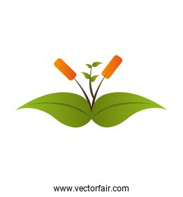 plant growing leaves icon vector graphic