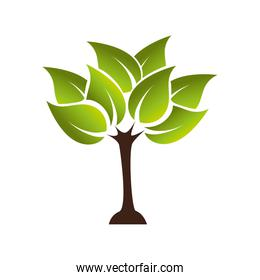 plant growing ecology icon vector graphic