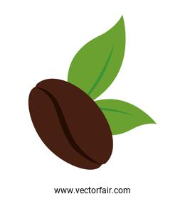 leaf coffee beans cafe icon vector graphic