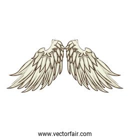 wing angel animal icon vector