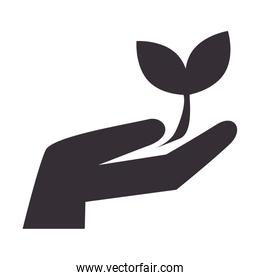hand leaves ecology