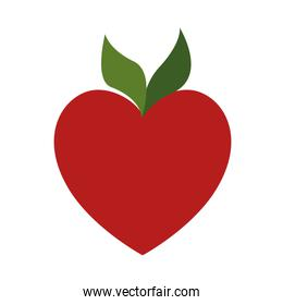 red apple in the shape of heart