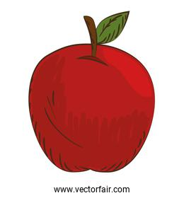 whole apple with leaf