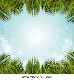 christmas pine leaves decoration background