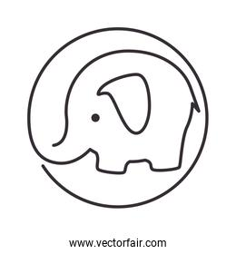 cute elephant isolated icon