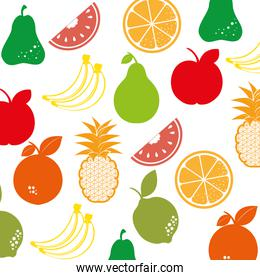 fruit salad plate isolated icon