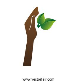 plant with hand isolated icon