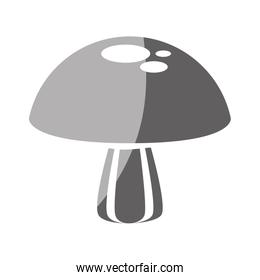 fungus nature isolated icon