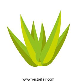 bamboo leafs isolated icon