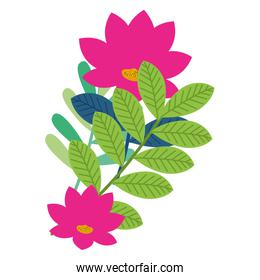 flowers and leafs decorative icon