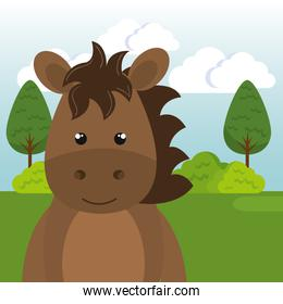 cute horse in the field landscape character