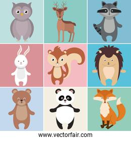 cute group of animals heads characters