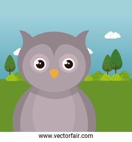 cute owl in the field landscape character