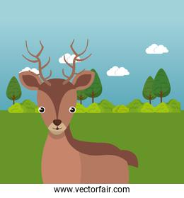 cute reindeer in the field landscape character
