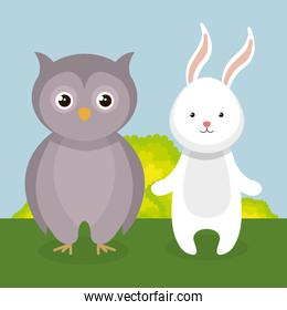 cute rabbit and owl in the field landscape characters