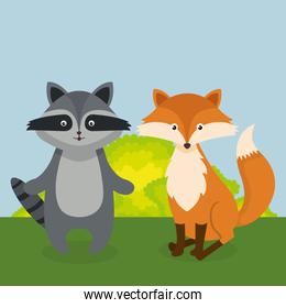 cute fox and raccoon in the field landscape character
