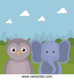 cute elephant and owl in the field landscape characters