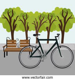bicycle in the park scene