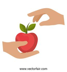 hand human with apple isolated icon