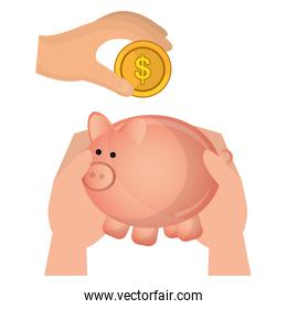 hands with piggy savings and coins over white