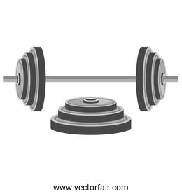 dumbell gym accessory icon