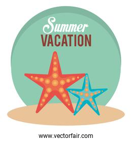summer vacations with starfish