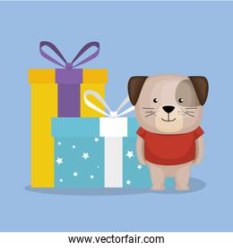 cute and little doggy with gifts