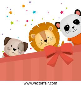 cute and little animals group