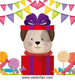 cute and little doggy with gifts and candies