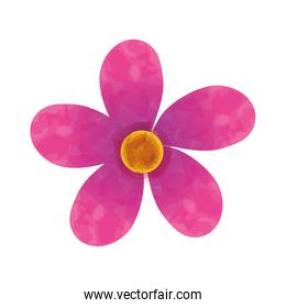 beautiful Flower decoration icon