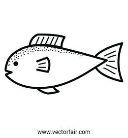 fish seafood isolated icon