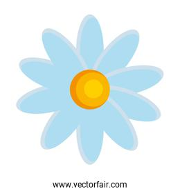 beautiful flower isolated icon